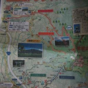 里山ハイキングのつもりが
