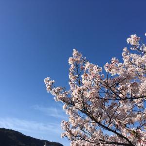 長野市レイキ交流会ありがとうございました