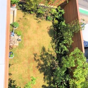 戸塚の家☆施主様からお庭の写真が送られてきました!
