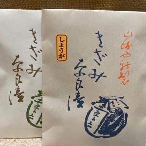 奈良漬け買いに奈良へ!