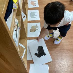 木の実キッズキャンパスでの2歳児のパズルレッスン!