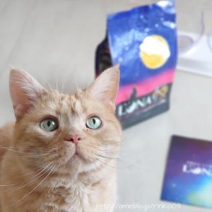 グルメな猫ちゃんに♡2種のアソートが楽しめる国産のカリカリフード「LUNA(ルナ)」