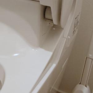 トイレの「耳垢」の掃除におススメな物