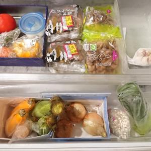 冷蔵庫の野菜室掃除の強い味方!