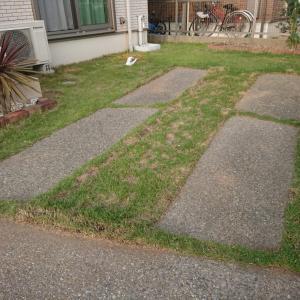 庭のお手入れがラクになったアイテム