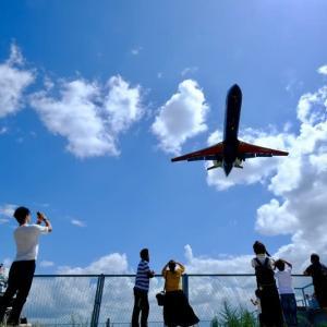 思い出の1枚(伊丹空港に着陸する飛行機)