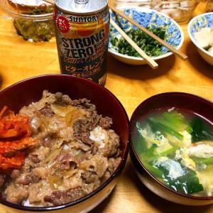【男飯】牛丼、筑前煮、キャベツとゆかりの漬物、高野豆腐