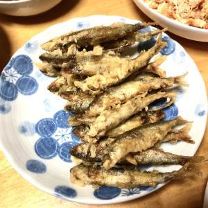 鮎の天ぷら、ジャガイモと三度豆の煮物、タラコとキムチとささみの和え物