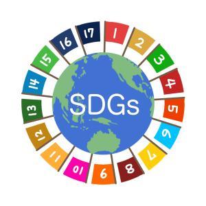 SDGsに関する問題 川崎市立川崎高等学校附属中学校(2021年)