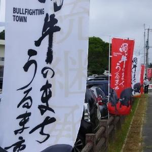 うるま祭り闘牛大会