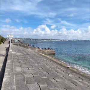 沖縄の夏!