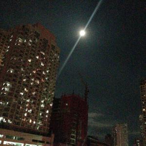 満月のヒロット
