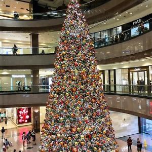 小さなクリスマスツリーが人気です。。。