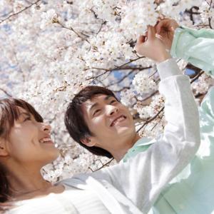 彼氏と中目黒でお花見デートするなら!目黒川の桜がおすすめ