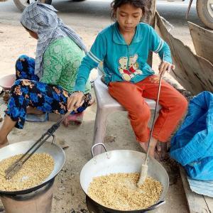 Sankor の村付近で道路わき両側でお米を潰したお菓子?を製造販売されています。