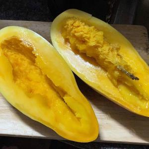 大型マンゴーの1品種をいただきました。
