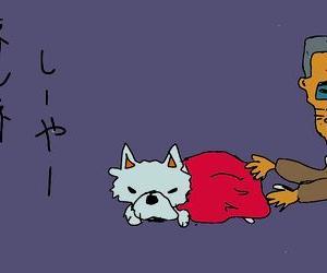 梅雨開けと犬