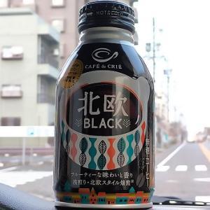 お気に入り「北欧BLACK」