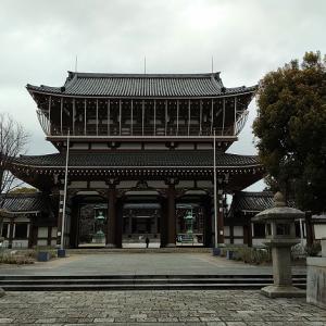 東別院の「桜」
