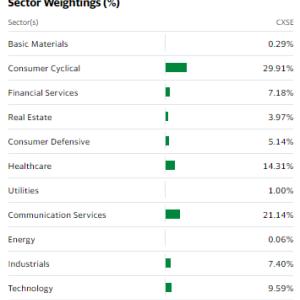 【CXSE】中国ニューエコノミーETFは国有企業が除外の中国株ETF