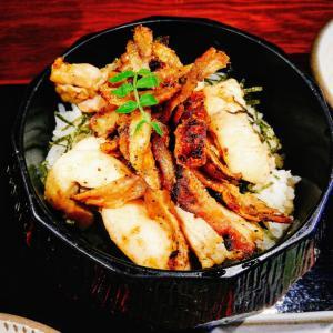 とりまぶし 鶏料理 中州
