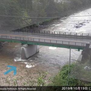 狩野川、又しても出水で鮎は?