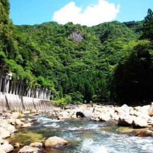 友釣り可能な青蓮寺川へ遠征