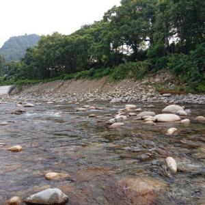 越後湯沢魚野川鮎、遠征初日激渋の中