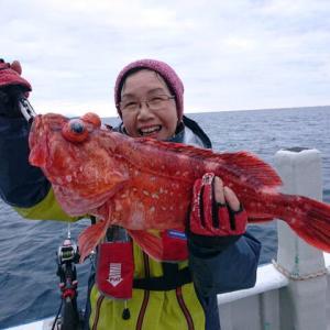 沖釣り、アコウダイと間違える大物