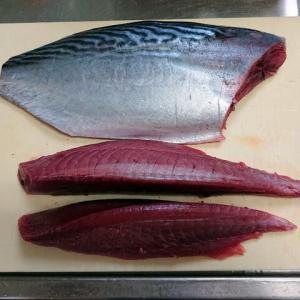 珍しき魚で舌鼓