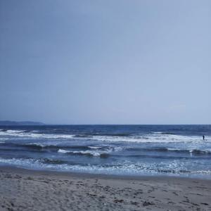 【THE・アーティストな集い。】海と、絵描きと、時間を忘れる素敵空間。