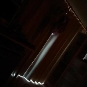 夜中の電話