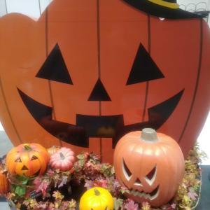 秋祭り&馬肥ゆる秋