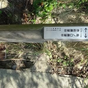 鞆の浦 サイクリング 仙酔島 ハイキング P2 END