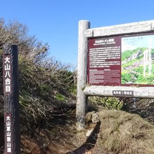 鳥取県西伯郡 大山 登山 P5 八合目~頂上(弥山) 標高 1600m~1709m