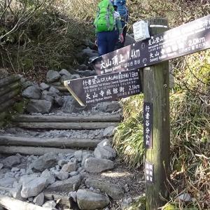 鳥取県西伯郡 大山 登山 P4 六合目~七合目 標高 1300m~1500m