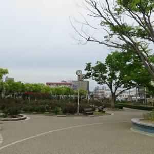 広島県福山市 ばら公園、緑町公園 福山ばら祭 2019年5月19日・20日