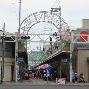 広島県福山市 ローズナード霞、中央公園 福山ばら祭2019
