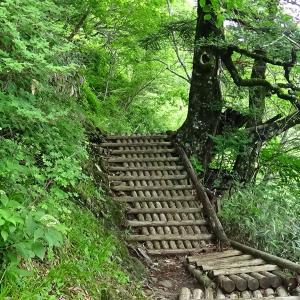 愛媛県西条市 石鎚山 西日本最高峰 土小屋ルート P3