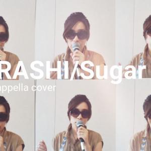 「Sugar」をひとりハモネプしてみた!
