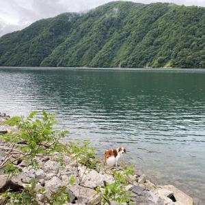 静かな湖畔で車中泊のこと①