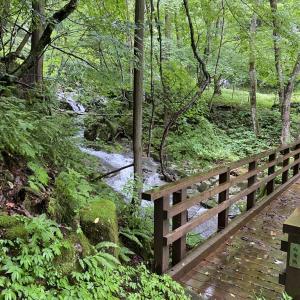 清涼感漂う滝見散策のこと