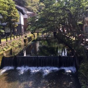 城崎温泉旅行。温泉寺本尊十一面観音立像33年ぶりにご開帳。