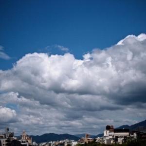 真夏の京都。上賀茂神社。佰食屋。