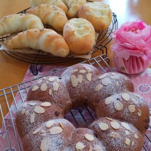 塩パン&シュガーバターパンとチョコチップエンゼルパン