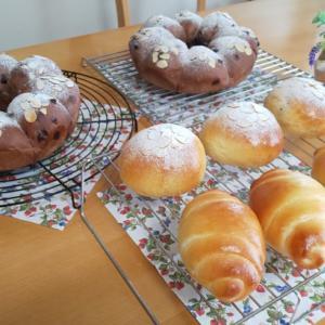 6/29 ロールパン&ラムレーズンパンとチョコチップエンゼルパン