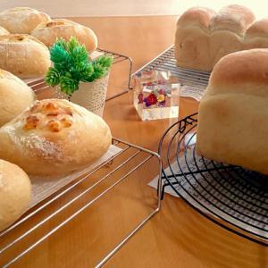 8/4 ハード系パンと食パン