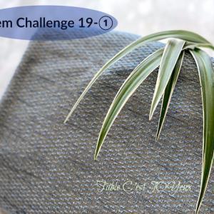 アイテムチャレンジ19−①(スモーキーブルークロスとオリヅルラン)