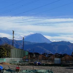 1月8日の富士山