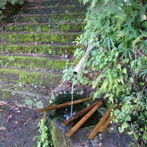 お水取り。八幡宮と龍王神社
